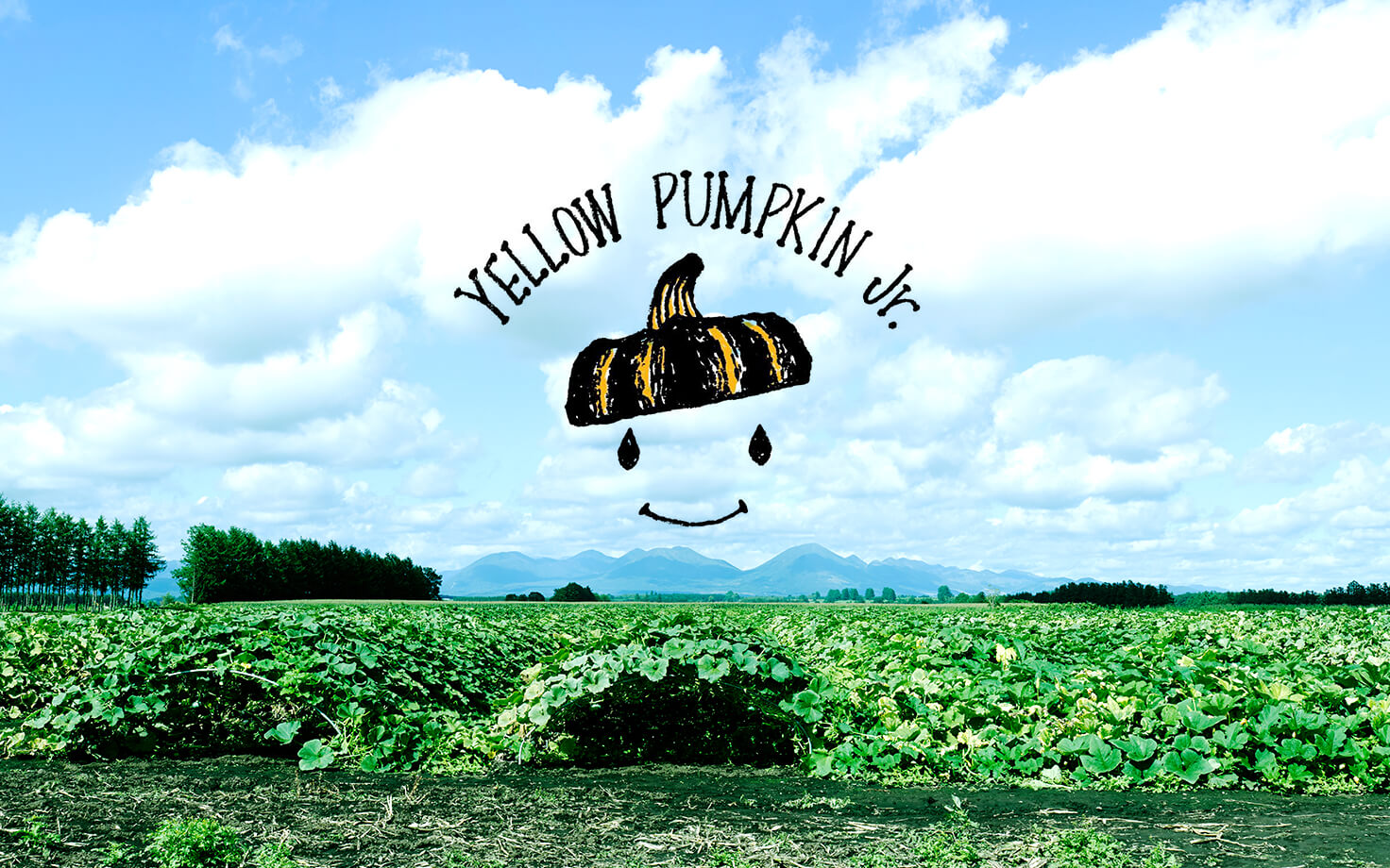 YELLOW PUMPKIN Jr.